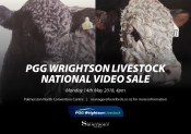 National Video Sale Programme