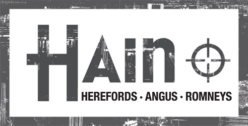 Hain Herefords Logo